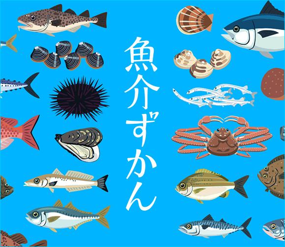 z_ichiran_fish