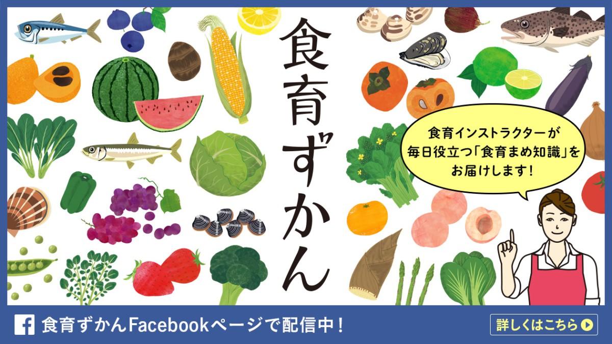 Facebook_banner1260_15px