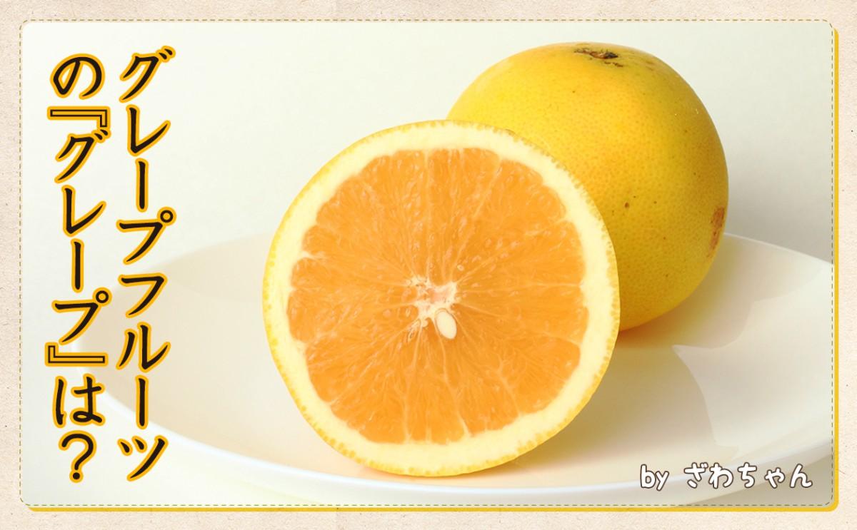 〈食育まめ知識〉グレープフルーツの『グレープ』は?