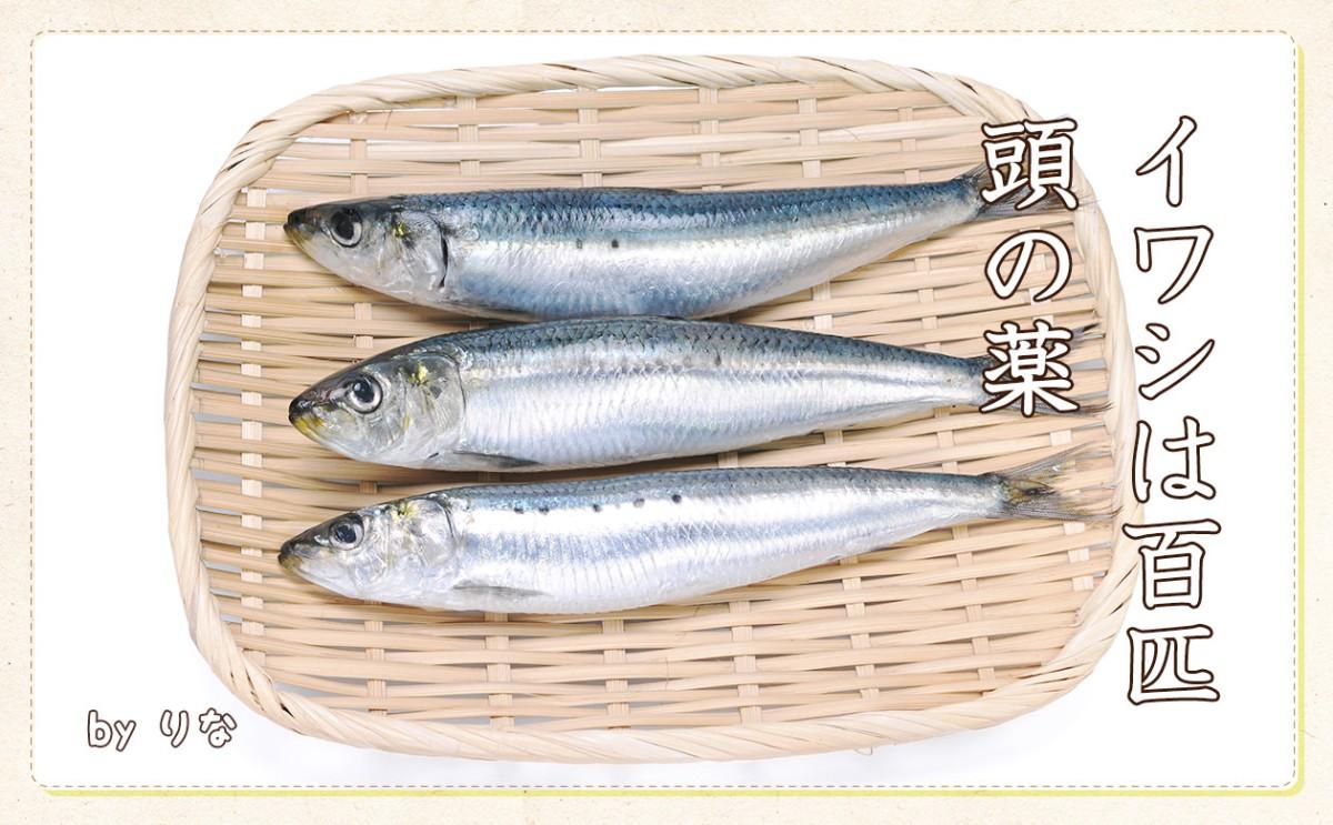 04002_syusei