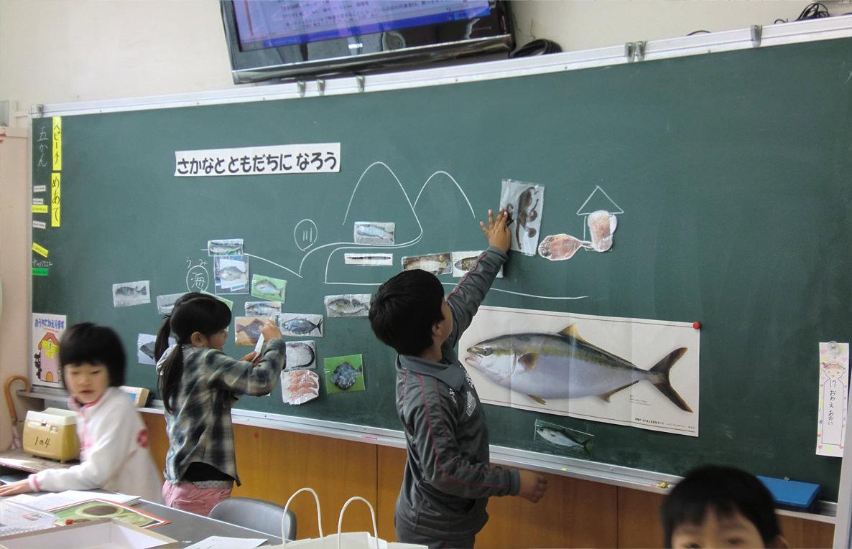 """学級活動の時間に行った授業「さかなとともだちになろう」では、磁石付きの魚カードを釣り上げて、その魚のすんでいる場所や形、特長を知り、魚と親しくなり、まさに""""ともだち""""になるところから学習が始まります"""