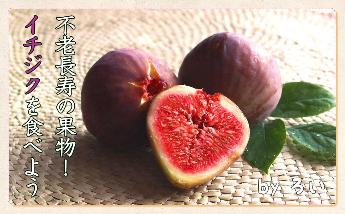 不老長寿の果物!?今が旬の「イチジク」を食べよう!