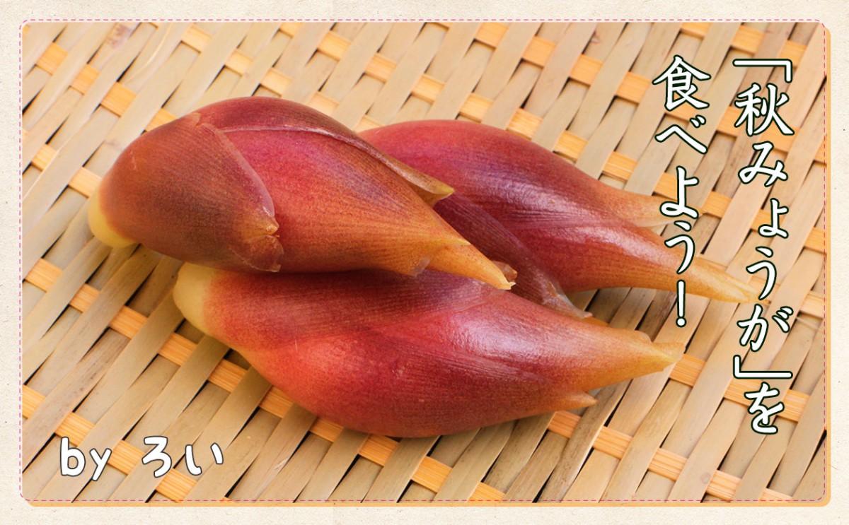 日本原産の香味野菜!「秋みょうが」を食べよう