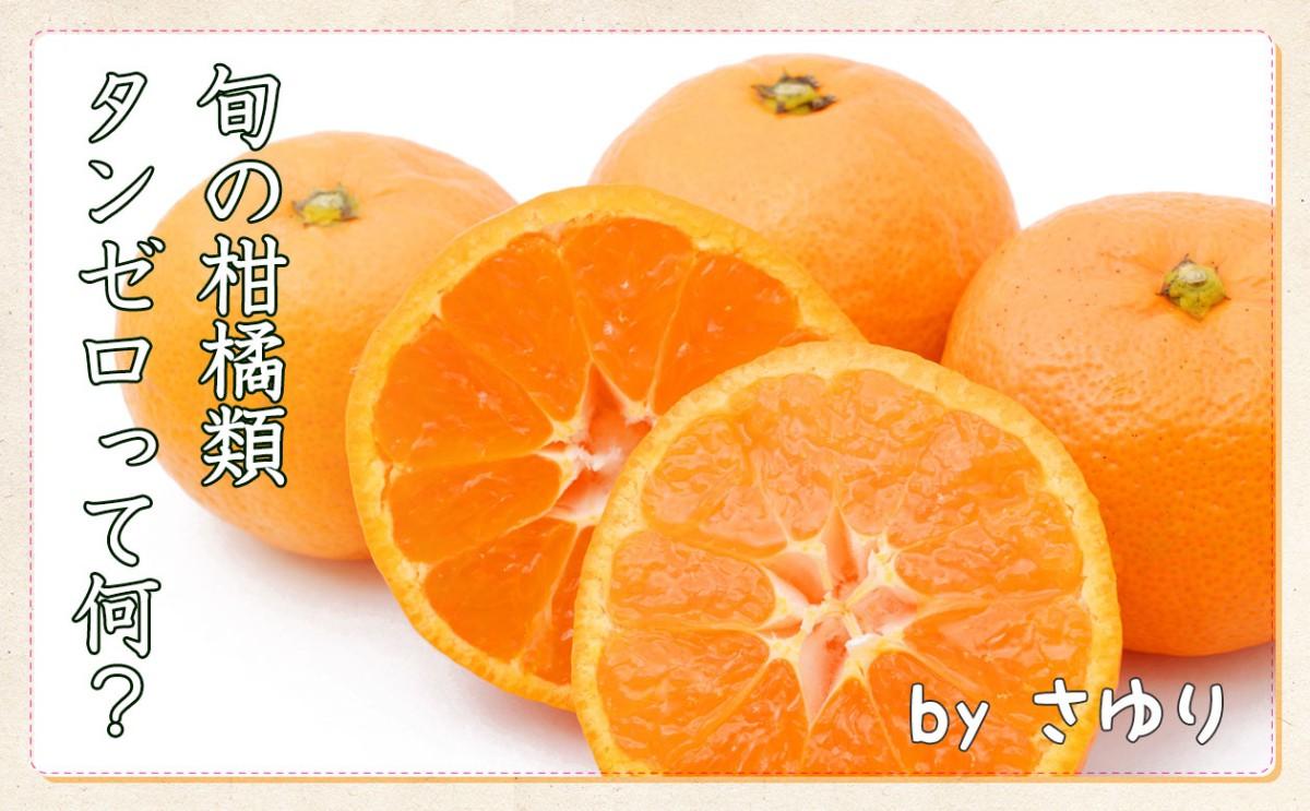 タンゼロって何?旬の柑橘類あれこれさゆり柑橘類_main