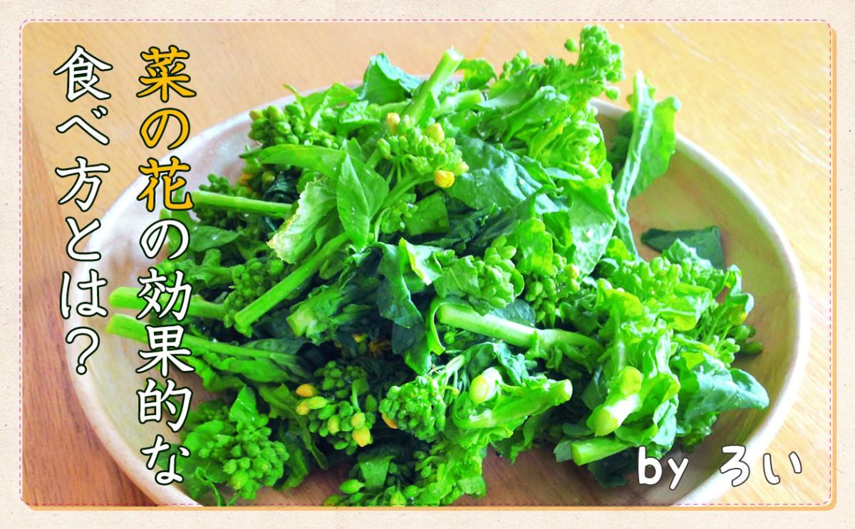 春の味覚!栄養たっぷりな菜の花の効果的な食べ方☆