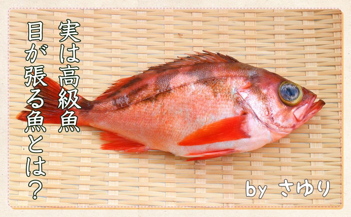 高級魚になりつつある「目が張ってる魚」って?