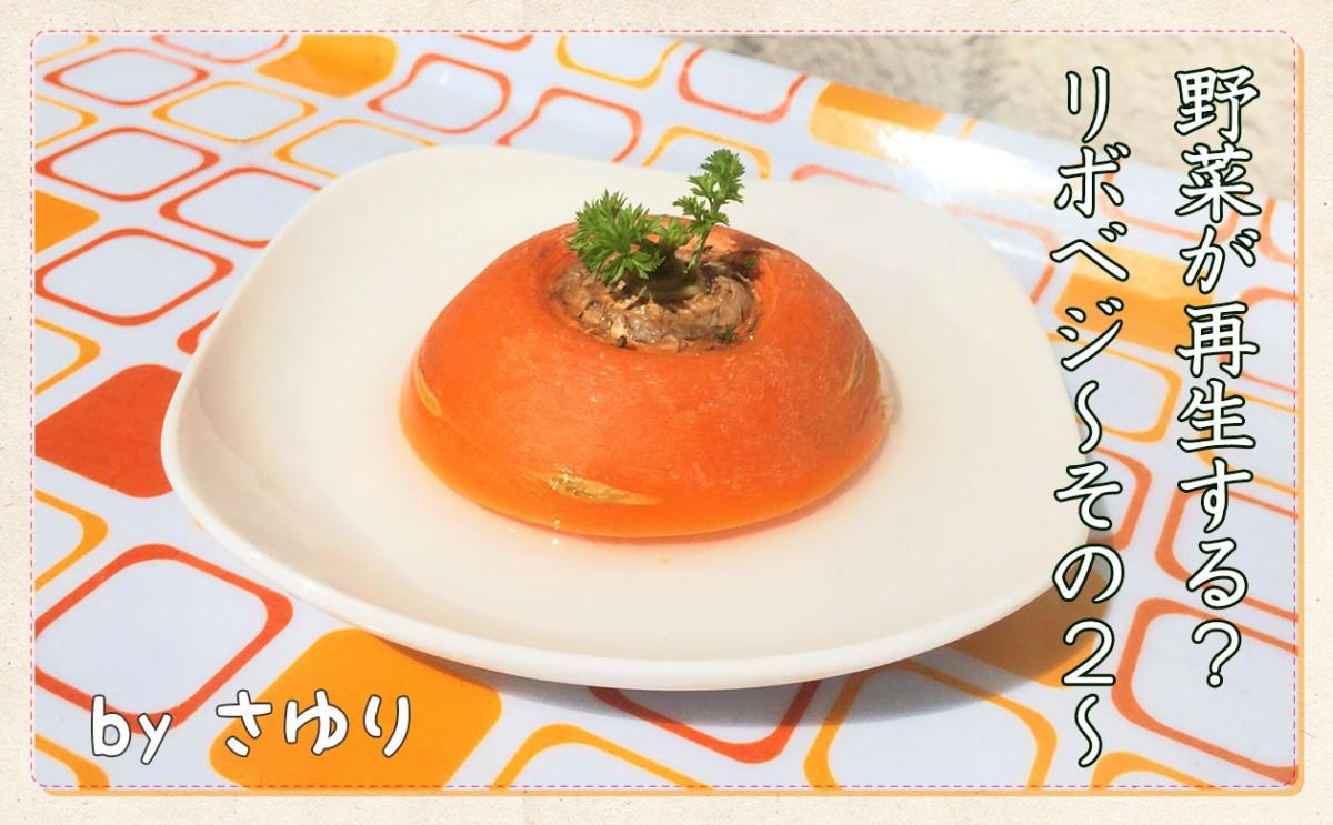 """野菜が再生する?""""リボベジ"""" ~その2~"""