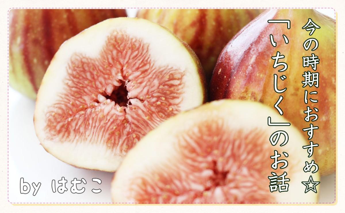 夏と秋の境目に、 おすすめフルーツはいちじく!