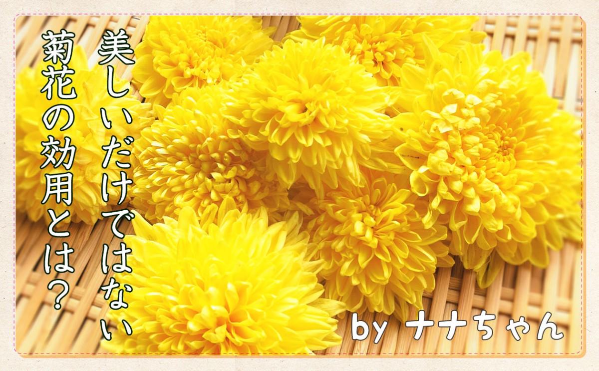 昔から日本にも食べられる花があった?!