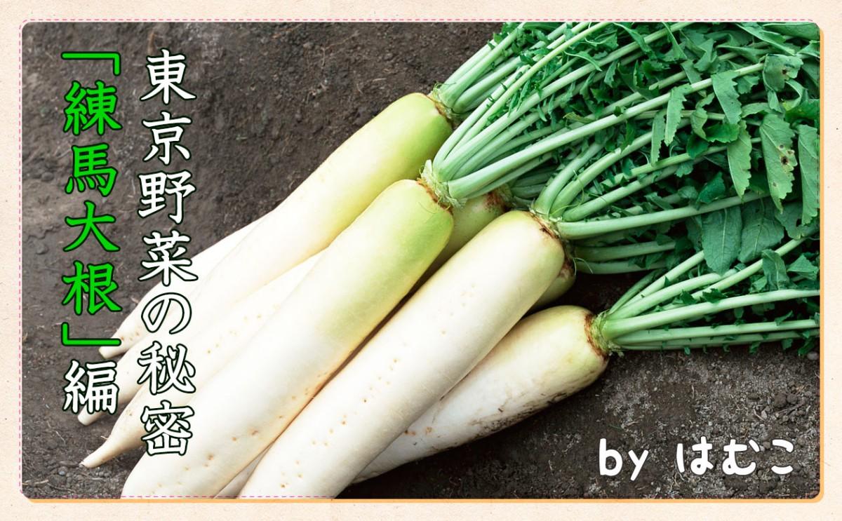 東京野菜の秘密練馬大根編