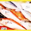 今日のお買い物からすぐに活かせる!食材の目利きポイント~魚編①~