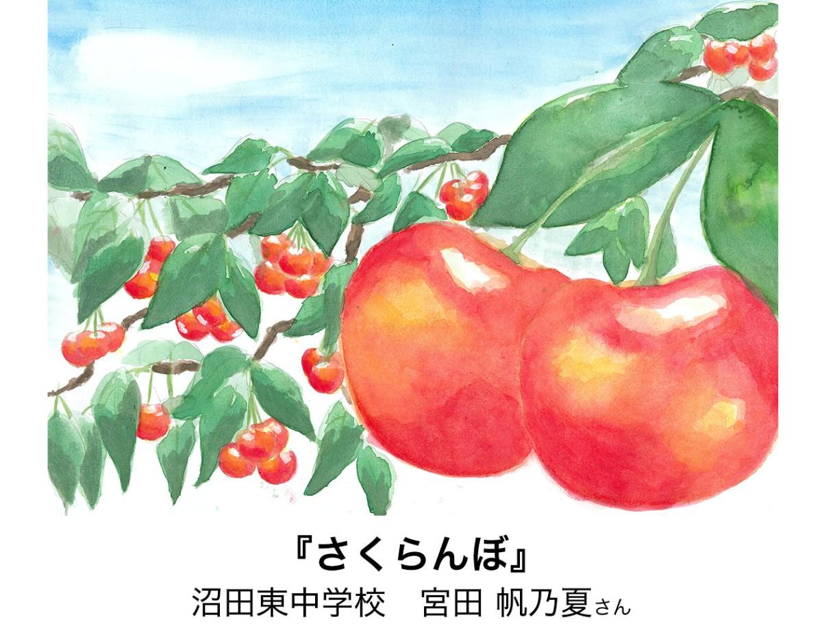 沼田東中学校 宮田 帆乃夏さん